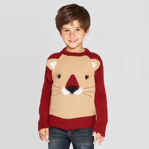 Toddler Boy Sweater Knit Pullover Lion LOng Sleeve